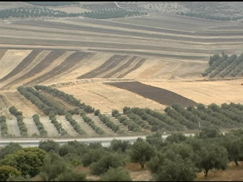 Valley in Israel