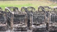Vandalos prendieron fuego a autobuses y edificios publicos desde el miercoles en ataques promovidos por el poderoso cartel de la droga de Rio Grande...