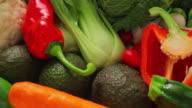 CU PAN Variety of vegetables and salad / London, United Kingdom