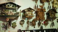 Various Cuckoo Clocks on wall