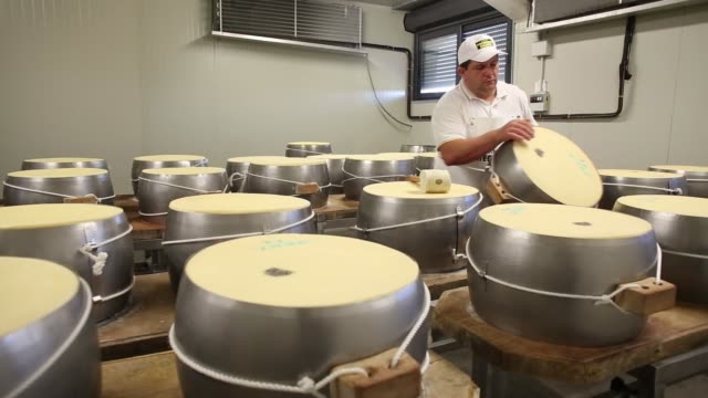 Various shots a master cheesemaker uses a mallet to tap whole cheeses encased in fascera moulds during the Parmigiano Reggiano cheese manufacturing...