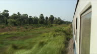 WS POV Vegetation along train tracks, Chaiya, Thailand