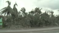 Vegetation destroyed by heavy Ashfall lines side of highway after eruption of Merapi volcano; Indonesia. 7 November 2010 / AUDIO