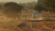 Vehicle driving down dirt road in the bush at sunset Rhino poaching is a major threat to the extinction of rhinos living in and around nature...