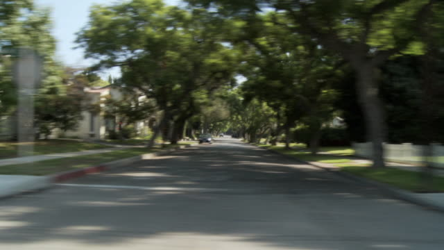 WS POV Vehicle moving through shady leafy neighborhood / South Pasadena, California, USA