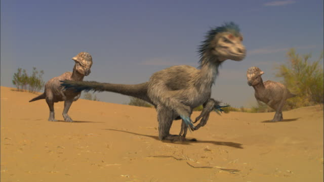 CGI, MS, Velociraptor surrounded by dinosaurs on sand dune