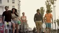 Venice Beach Friends