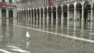 Venice was under water Saturday after high tides and heavy rained combined in a phenomenon known as the acqua alta CLEAN Venice under water after...