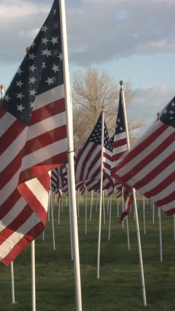 vertical HD of multiple flags blowing in the wind