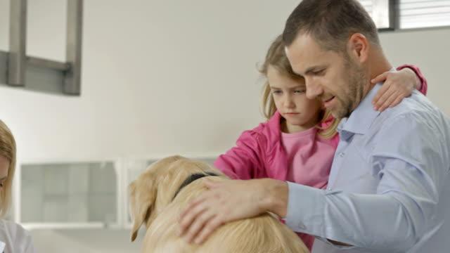 Tierarzt untersuchen einen Hund's Paw