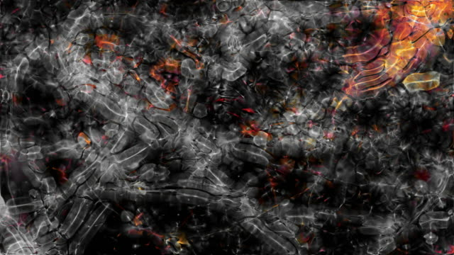 Video Background: Pulsing microscopic forms (Loop).