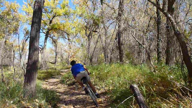 HD video Colorado mountain biking through fall colors