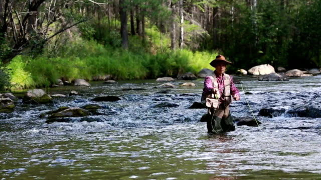 HD video. Fly fisherman