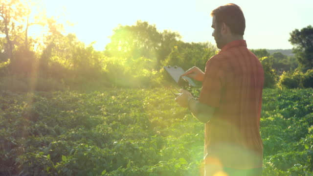 4K Video Man boer Pilot met behulp van Drone Controller bij zonsondergang