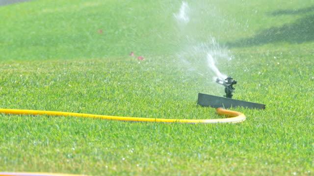 Video of sprinkler in the garden in 4k