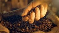 Video van het nemen van koffiebonen in echte Slowmotion