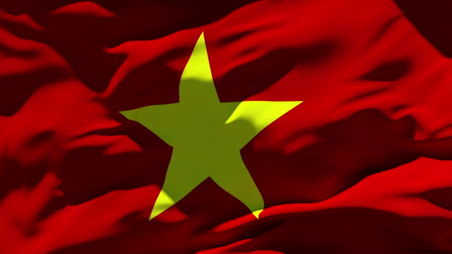 Vietnam Flag Stock Foo...