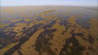 AERIAL WS View above Everglades wetland / Florida, USA