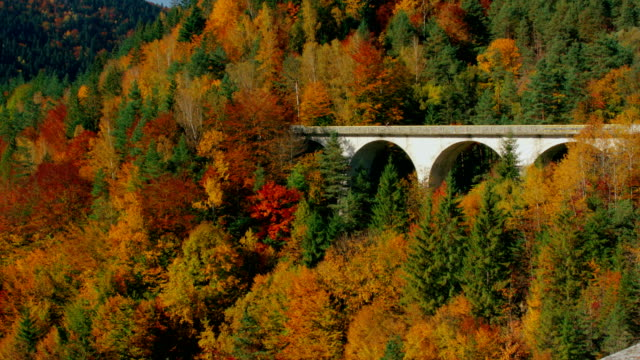 View at picturesque arch bridge through colorful autumn forest