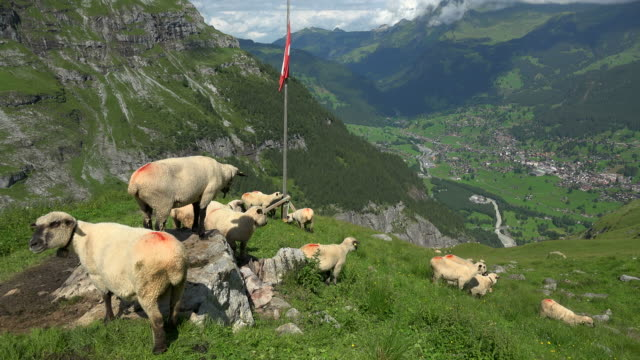View from Bregg to Grindelwald, Bernese Alps, Switzerland, Europe