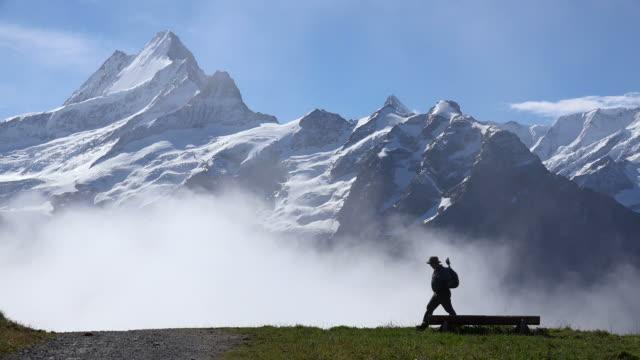 View from Grindelwald-First to Schreckhorn, Bernese Alps, Switzerland, Europe
