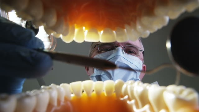 view from inside an open mouth to a dentist working