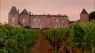 View from vineyard of chateau at Chateau d'Yquem / Graves, Bordeaux, France