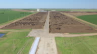 WS AERIAL TU View of airstrip to reveal cattle farm at Pratt Army Airfield / Kansas, United States