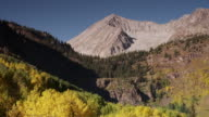 WS View of  Alpine peak and aspen trees changing colors / Marble City, Colorado, United States