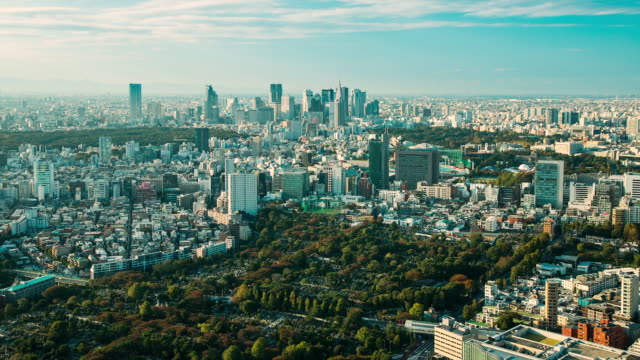 WS T/L View of aoyama cemetery and shinjuku business and shpooing district / Tokyo, Japan