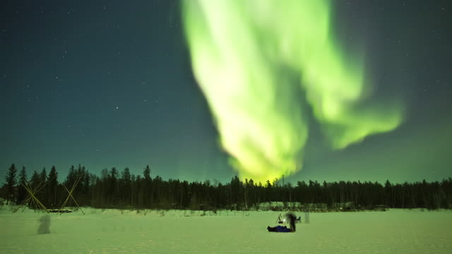 WS T/L View of Aurora above snow covering forest with people watching and photographing / Yellowknife, Northwest Territories, Canada