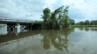 WS PAN View of bayou / Louisiana, United States