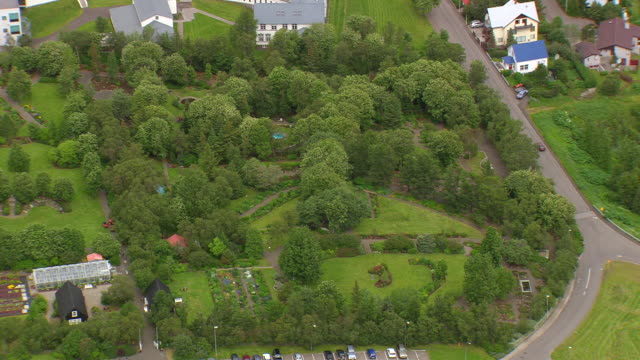 WS AERIAL View of Botanical Garden and row houses / Iceland