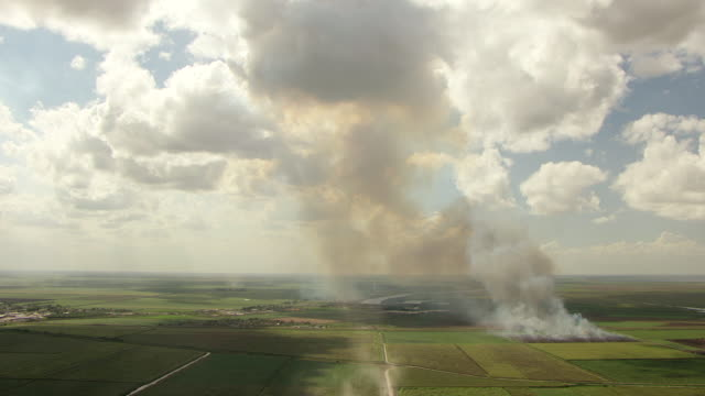 WS AERIAL View of burning of sugarcane in agricultural fields / Lake Okeechobee, Florida, United States