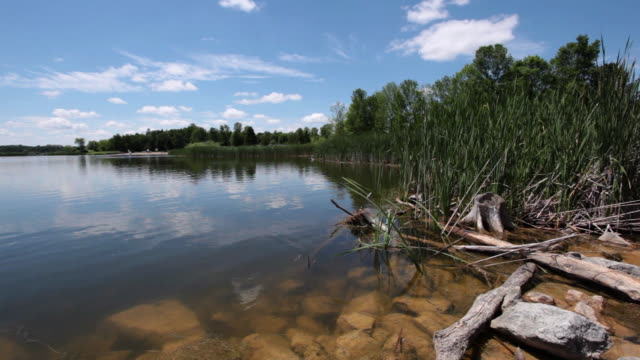MS View of calm lake with rocks on shore / Waterloo, Ontario, Canada
