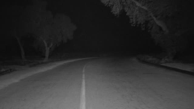 WS POV View of car driving down tree lined road through Griffith Park