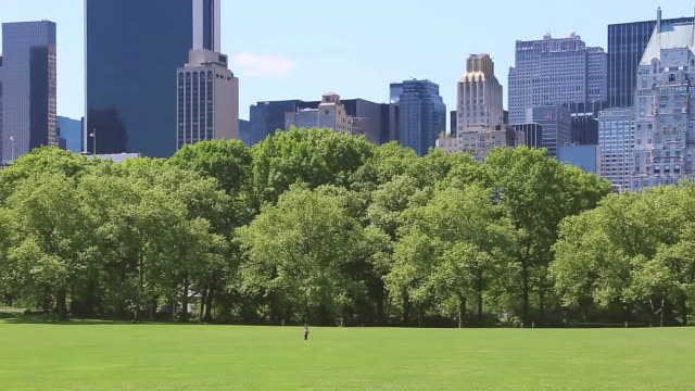 WS PAN View of Children and fresh green trees and Manhattan Skyscraper from Sheep Meadow Central Park / New York, United States