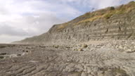 WS T/L View of cliffs of Jurassic Lower Lias.