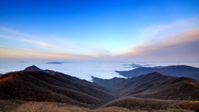 View of cloud sea and sawgrass in Gyeonggi province