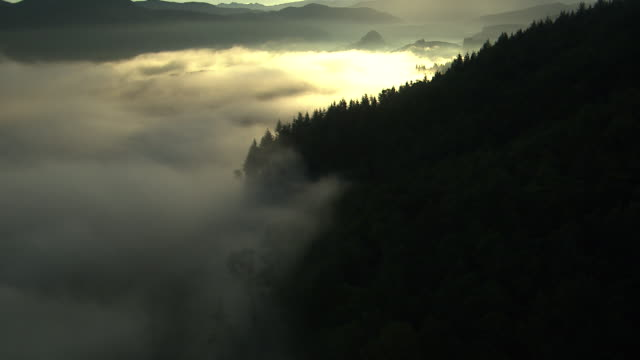 WS AERIAL View of clouds and mist over valley at base of Mount Rainer / Washington, United States