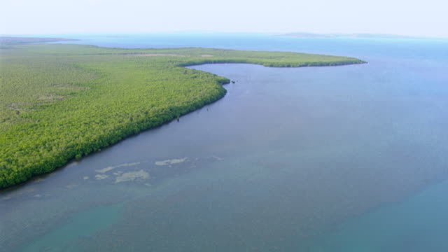 WS AERIAL View of coastline and forest / Darwin, Northern Territory, Australia
