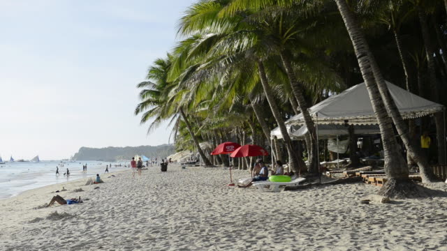 WS View of coconut trees and people on White Beach / Boracay, Philippines