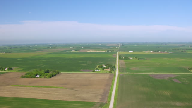 WS AERIAL POV View of crops growing On field against horizon / Polk County, Iowa, United States