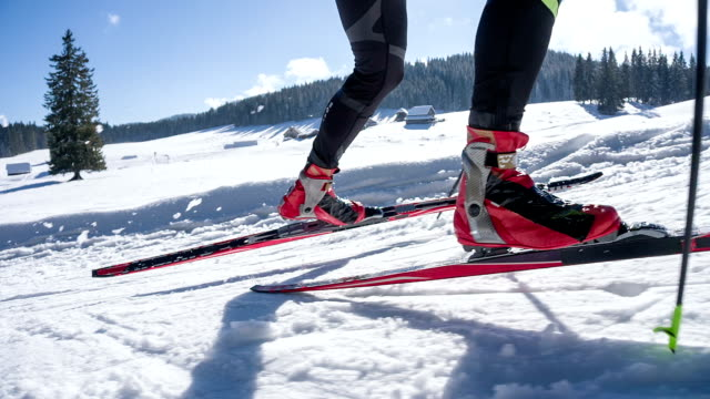 View of cross country skis