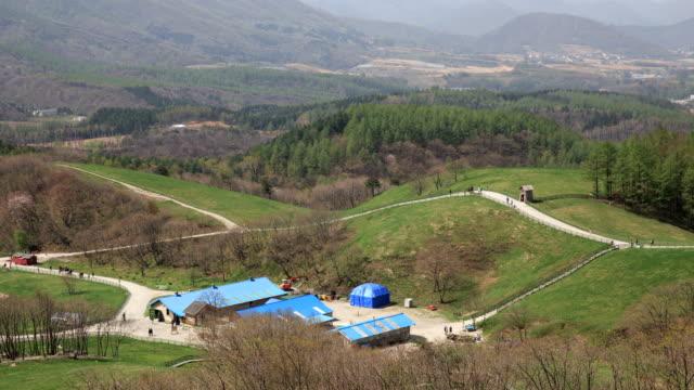 View of Daegwallyeong Yangtte Pasture (sheep pasture)