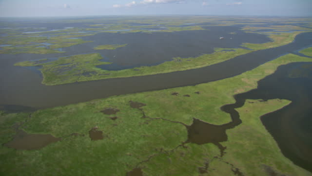 AERIAL WS View of delta gulf side of river / New Orleans, Louisiana, United States