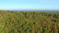 WS AERIAL View of dense forest in Clay County and Talladega County / Lincoln, Alabama, United States