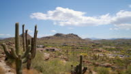 WS T/L View of desert landscape / Scottsdale, Arizona, USA