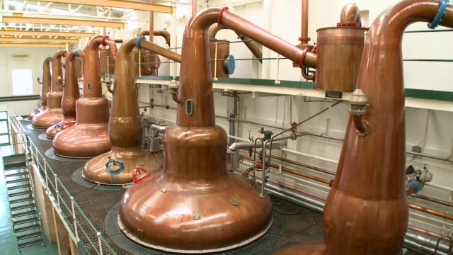 WS View of distillation process in whisky factory / Rothes, Speyside, Scotland