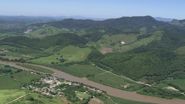 Ws Aerial View Of Downtown Forest And Jungle With River ...